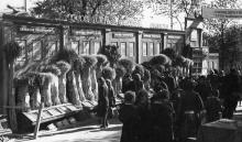 Сельхозвыставка, Одесса, 1958 г.