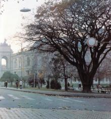 Дуб на пересечении улиц Ланжероновской и Пушкинской. Фото Роберта Папикьяна в фотоальбоме «Одесса». 1987 г.
