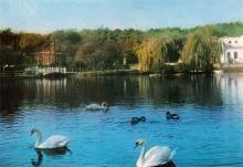Одесса. Озеро в парке Победы. Фото А. Шагина. Открытка из набора «Город-герой Одесса». 1969 г.