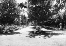 Территория киностудии, 1950-е гг.