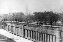 Аллея, ведущая от ворот к морю. Вид с площадки 1-го павильона. Начало 1930-х гг.
