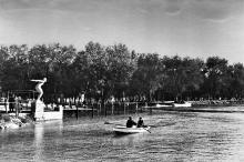 1955 г.