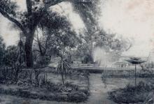 Ботанический сад (1917–1941)