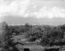 Вид с башни Кука на главную аллею