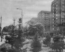 На Комсомольском бульваре. Фото в путеводителе «Одесса». 1975 г.