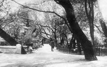 Одеса. Хаджибієвський парк. Поштова картка. 1933 р.