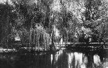 Одеса. Ставок Хаджибіївського парку. Поштова картка. 1933 р.