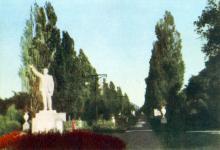 Тополева алея. Фото з фотогармошки «Одеса курортна», 1958 р.