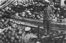 Фотография 1918 г.