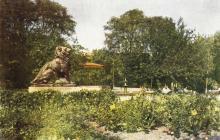 Городской сад, открытка, фотограф Т. Бакман, 1956 г.
