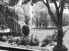 В парке дома отдыха «Мирный». Фото в фотобуклете «Большой Фонтан», 1974 г.