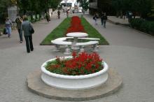 Аллея в Аркадии. Фото В. Тенякова. 2010 г.