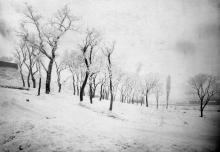 Херсонский сквер. 1910-е гг.