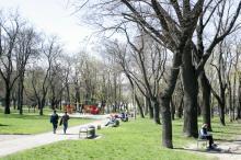 Сквер Гамова. Фото В. Тенякова, 4 апреля 2017 г.
