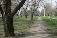 Одесса. Парк «Азербайджан». Фото В. Тенякова. 06 апреля 2017 г.