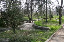 Ботанический сад. Фото В. Тенякова. 06 апреля 2017 г.