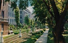 Одесский технологический институт. Главное учебное здание. Фото в книге-фотогармошке «Одесса». 1960-е гг.