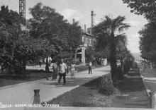 Одесса, аллея, пальмы. Аркадия. Фотооткрытка. 1930-е гг.