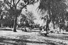 Клинический кардиологический санаторий. В парке. Фото в брошюре «Одесса. Приморские курорты». 1933 г.