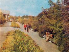 На главной аллее. Фото в брошюре «Одесская туристская база», 1972 г.