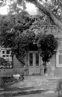Одесса. Во дворе дома № 7 в переулке Тельмана. Фото А. Дроздовского. 1970-е гг.