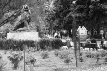 В городском саду. Одесса. Начало 1950-х