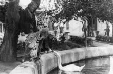 Одесский зоопарк. 1960-е гг.