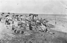 Одеса. Лузанівка. Пляж. Поштова картка. Видання Одеського комітету Червоного Хреста. 1930-е рр.