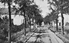 Одесса. Лузановка, Верхний Санаторий. Главная аллея. Почтовая карточка. По подписи 1927 г.