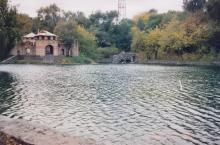 В Дюковском саду. Фото А.В. Валейно. 28 октября 2005 г.