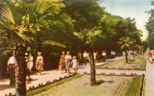 Одеса. Парк в Аркадії. Фото А. Підберезького з комплекту листівок «Одеса». 1962 р.