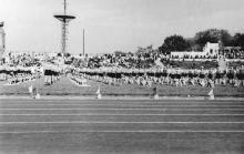 Вид со стадиона на парашютную вышку