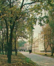 У парку санаторію «Росія». Фото Р. Папік,яна на листівці з комплекту «Одеса». 1982 р.