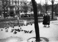 Одесса. В сквере на площади Советской Армии, слева видна улица Советской Армии и здание Пассажа. 1950-е гг.