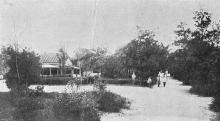 Одеса. Курорт «Пролетарське Здоров,я», Хаджибей. Куточок парку. Поштова картка, 1930-е р.