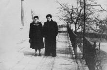 Дворец пионеров со стороны Приморского бульвара. 1960-е гг.