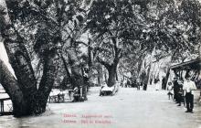 Хаджибейский парк