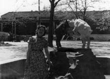 На фоне фонтана в «Детском секторе». 1956 г.