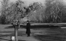 Одесса. Вход на Аллею Славы. 1966 г.