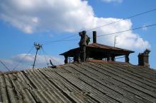 На крыше дома Русского технического общества. Фото В. Баля. 2008 г.