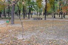 Одесса. В Мечниковском сквере. Фото А. Вельможко. Октябрь, 2005 г.