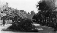 Летний кинотеатр им. Ворошилова на ул. Комсомольской, 22. Одесса, ноябрь, 1956 г.