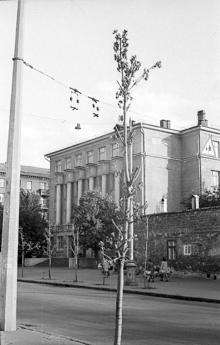 Фотограф Д. Климовский, 1970-е годы