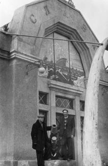 Музей китобойной флотилии «Слава» в парке Победы. Одесса, 1950-е гг.