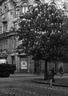 Одесса. Дом № 25 по ул. Карла Либкнехта, угол Карла Маркса. 1956 г.