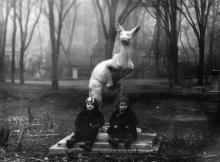 В Одесском зоопарке. 1964 г.