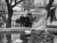 Одесский зоопарк. 1950-е гг.
