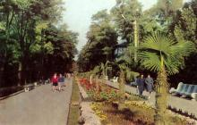 Курортная зона Аркадия. Фото Д. Петренко. Набор фотооткрыток «Одесса». 1975 г.