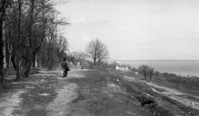 Вид с улицы Гефта на библиотечный павильон в парке Шевченко. Фото В.А. Чарнецкого. 1960-е гг.